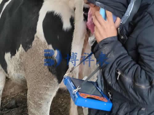 牛用B超机
