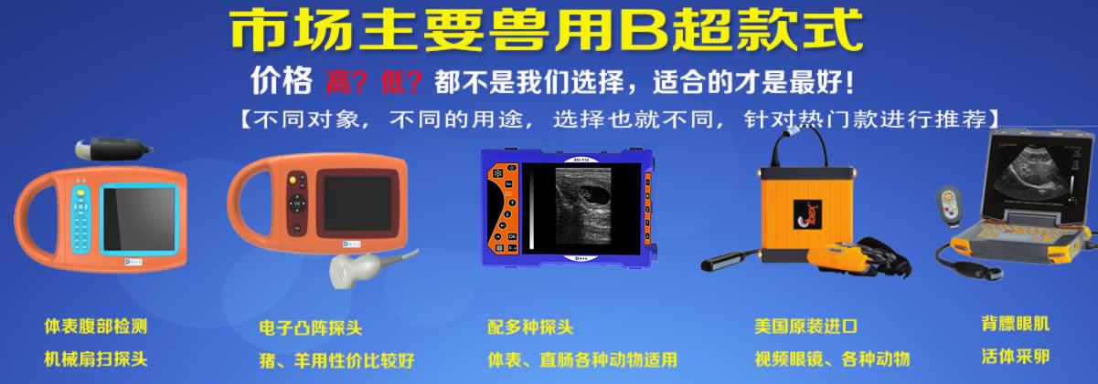 主流兽用B超仪产品介绍